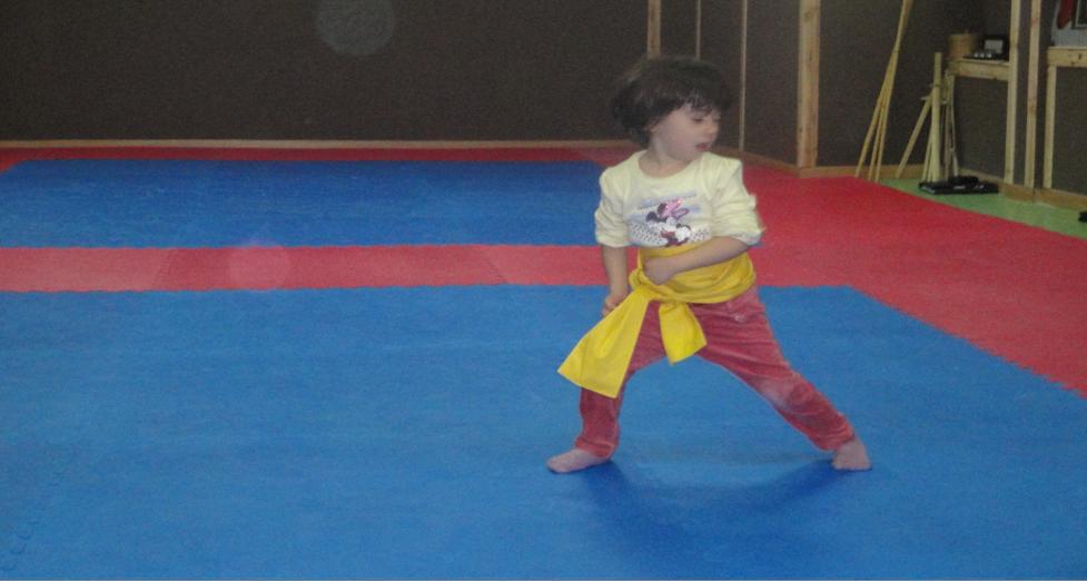 Kung fu infantil